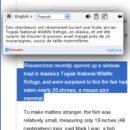 ImTranslator v. 2.1.0 Extention for Chrome