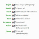 Multilingual Phrasebook